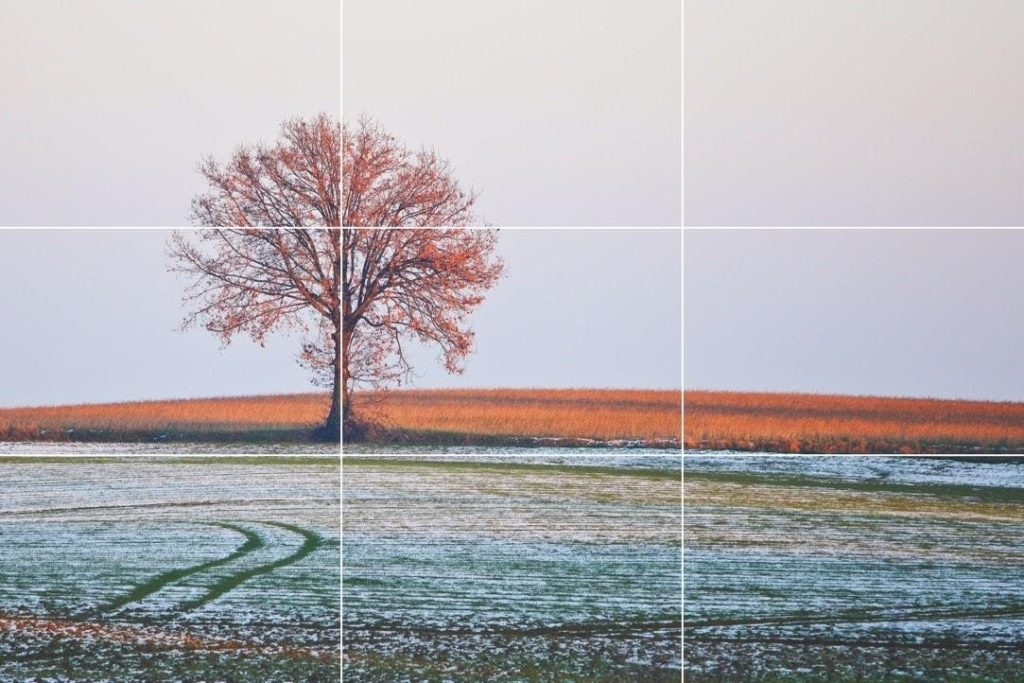example 1 rule of thirds