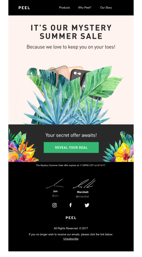 peel summer email example