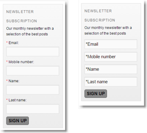 label vs placeholder design in an email sign-up form created with the MailUp plugin for WordPress