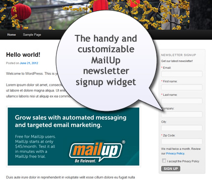Newsletter signup widget for WordPress